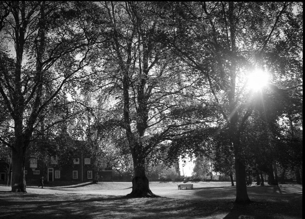Natural light photography, Ipswich, Suffolk