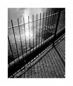 Black and white potograph of railings with natural light and shadows
